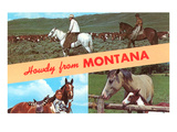 Howdy from Montana  Horses