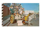 Zebra Donkey Cart  Tijuana  Mexico