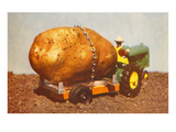 Giant Potato on Toy Tractor