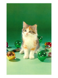 Kitten with Christmas Bulbs  Retro