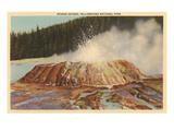 Sponge Geyser  Yellowstone Park  Montana