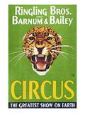 Circus Poster  1940S
