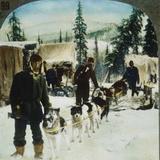 Alaskan Dog Sled  C1900