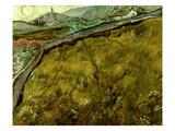 Van Gogh: Field  1890