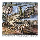 Niagara Falls: Beavers  1715
