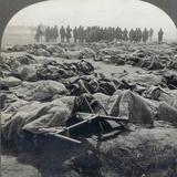 World War I: Russian Dead