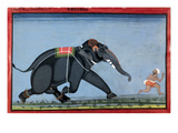 Elephant &amp; Trainer  C1750