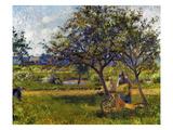 Pissarro: Wheelbarr  1881