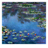 Monet: Waterlilies  1906