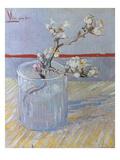 Van Gogh: Branch  1888