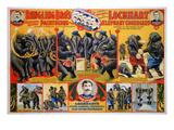 Circus Poster  1899