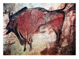 Cave Art
