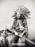 Sioux Leader  1891