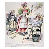 New South Cartoon  1895