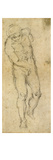 Michelangelo: Male Nude