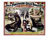 Circus Poster  C1898