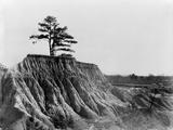 Mississippi: Erosion  1936