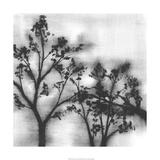 Silvery Trees I