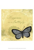 Butterfly Notes XI