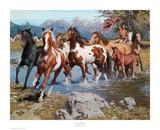 Native Wealth Reproduction d'art par David Mann
