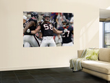 Houston Texans and Cincinnati Bengals: Brooks Reed  Quintin Demps