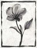 Sumi-e Floral I