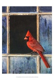 Cardinal Window