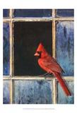 Cardinal Window