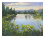 Oregon Reflections