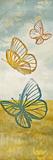Fluttering Field I