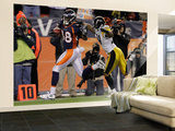 Denver Broncos and Pittsburgh Steelers: Demaryius Thomas and Ryan Mundy