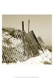 Fences in the Sand I