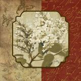 Tuscan Glimpse II