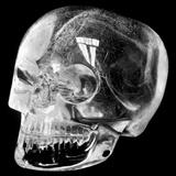 Aztec Rock Crystal Skull