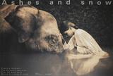 La jeune fille et l'éléphant  Reproduction d'art par Gregory Colbert