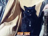 """Star Trek: The Original Series  """"Catspaw"""""""