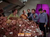 "Star Trek: The Original Series  Captain Kirk  Dr McCoy and Spock in ""The Trouble with Tribbles"""