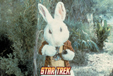 "Star Trek: The Original Series  The White Rabbit in ""Shore Leave"""