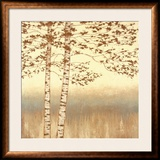 Birch Silhouette I