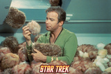 "Star Trek: The Original Series  Captain Kirk in ""The Trouble with Tribbles"""