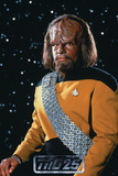 Star Trek: The Next Generation  Lt Commander Worf