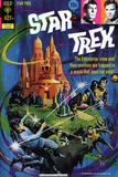 Star Trek: The Original Series Illustrated Cover  Trapped in a World that Does Not Exist
