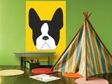 Yellow Boston Terrier