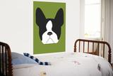 Green Boston Terrier