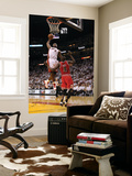 Chicago Bulls v Miami Heat - Game FourMiami  FL - MAY 24: LeBron James and Luol Deng