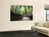 Bamboo Forest Walkway  Arashiyama District