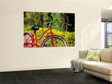 Red Bicycle  Half Moon Resort