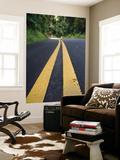 Yellow Road Markings  Maui  Hawaii