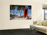 Caribbean  Antigua  Dickenson Bay  English Red Telephone Box