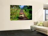 Bus Travelling on Island Road  Upolu  Samoa